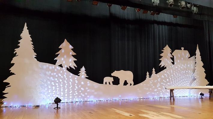 décor polaire